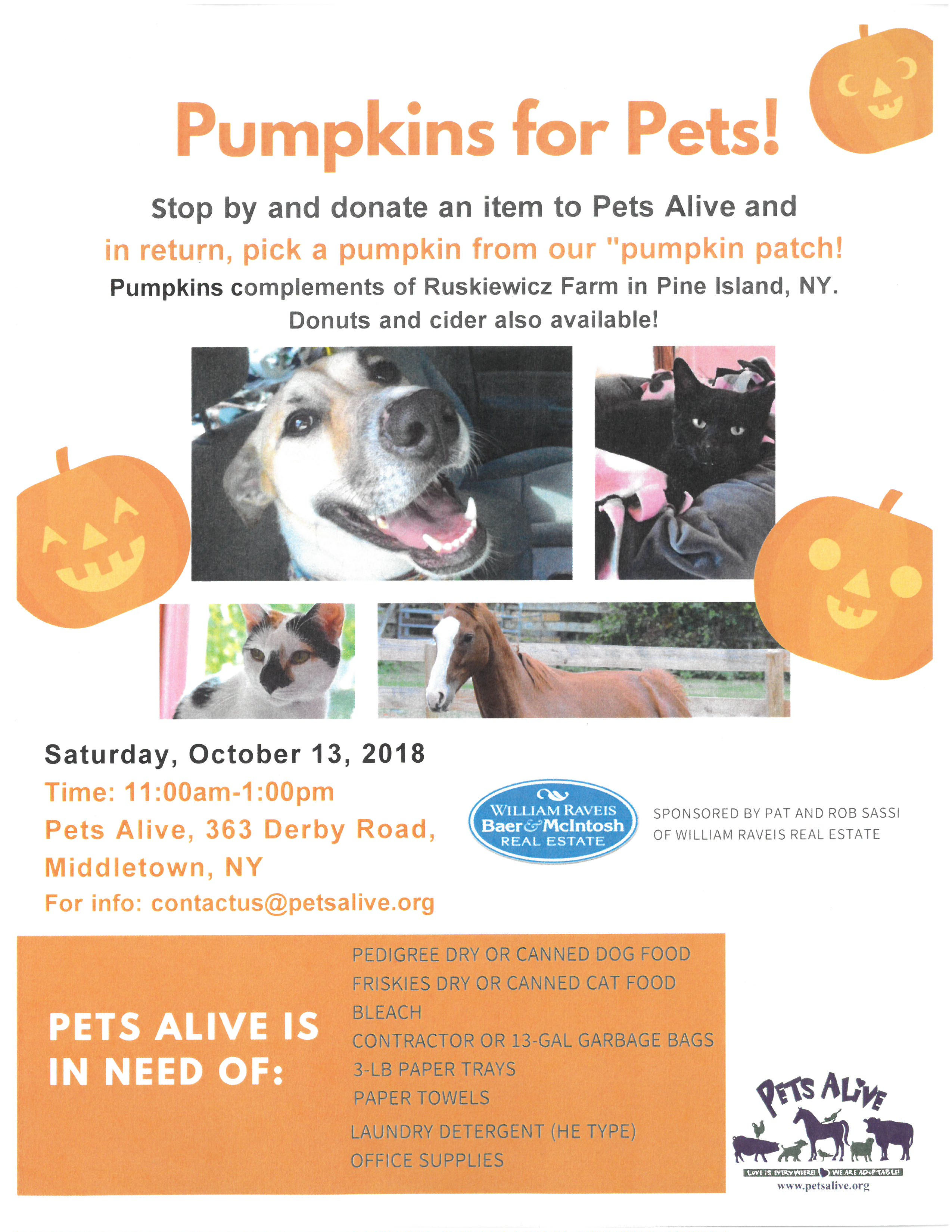 Pumpkins for Pets